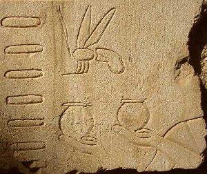 Des ruches, des pots et une abeille (tombe d'Ank'hor)