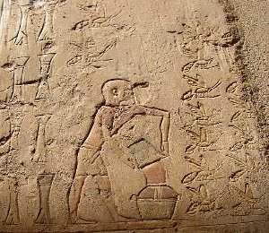 La récolte de miel (tombe de Pabasa)